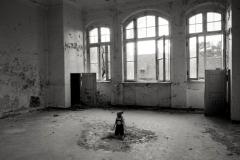 nauderer-herbert_interieur-2